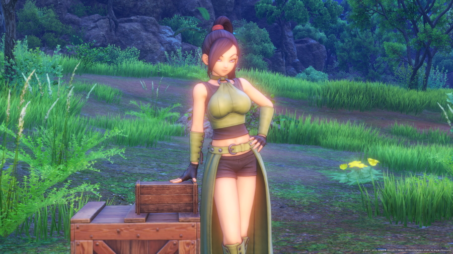 DRAGON QUEST XI: Echoes of an Elusive Age_20190613082612